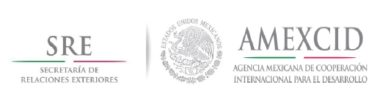 Mexican government-excellence scholarship program